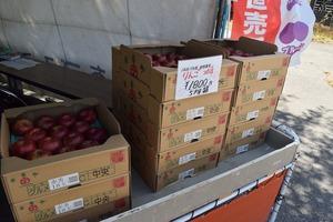 選果した桃やリンゴ、梨を販売しています!!