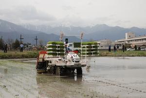 残雪を背に県内一早い田植え始まる