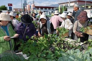 女性部主催 『苗の交換市』 5月19日(土)に開催