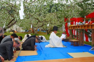 りんごの花満開の御料圃で豊作祈念