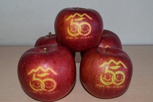 ▲創立50周年記念のロゴマークリンゴ