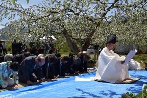 ▲豊作を祈った神宮御料圃のりんご祭り