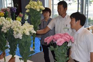 ▲花の形状やバランスなどをチェックする審査員