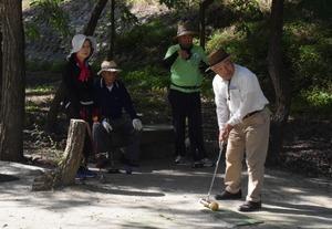 ▲マレットゴルフを楽しむ年金クラブの会員たち